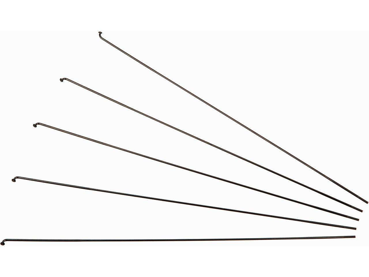 DT Swiss Speiche Competition 2.0 x 1.8 x 2.0 272 mm weiß 72 Stück